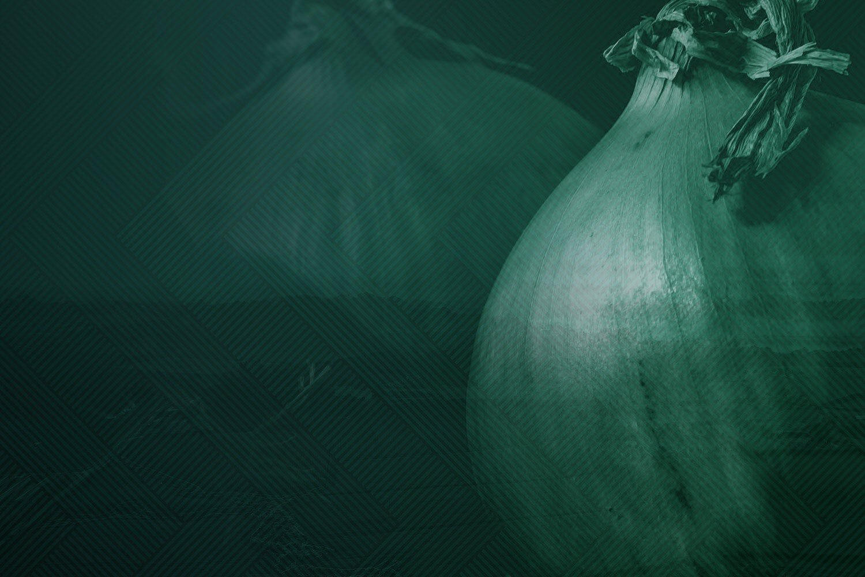 cs-onions.jpg